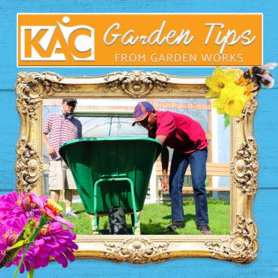 Garden-Tips-Thumbnail